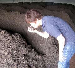 プーアール茶の発酵の過程
