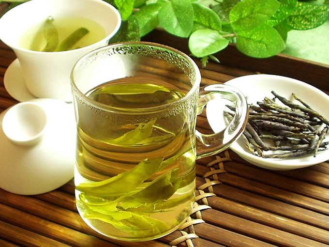 一葉茶(苦丁茶)商品画像